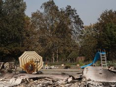 After the Fire: Santa Rosa, California by Alessandra Sanguinetti