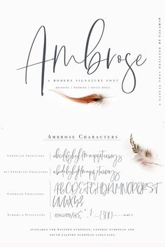 """Say hello to """"Ambrose Font"""", a handwritten signature font that is perfect for branding, social media headers, product packaging, wedding invites and cards and Calligraphy Handwriting, Calligraphy Letters, Typography Letters, Modern Calligraphy Alphabet, Hand Lettering Alphabet, Brush Lettering, Inspiration Artistique, Karten Diy, Signature Fonts"""