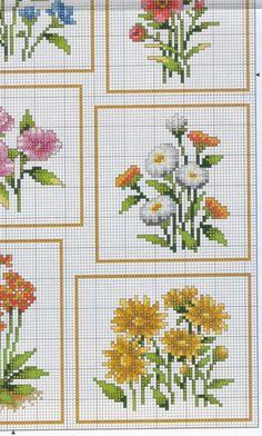 Gallery.ru / Фото #4 - цветы - irisha-ira