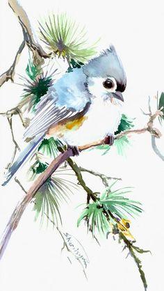 Titmouse on Pine Tree 12 X 7 original watercolor by ORIGINALONLY