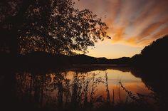 I love Radner Lake