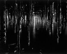 Wynn Bullock - Under Monterey Wharf, 1969 - Featured Image of the Month - July 2013