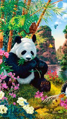 Gif-Panda at Paradise Animals Images, Animals And Pets, Baby Animals, Cute Animals, Niedlicher Panda, Cute Panda, Wild Panda, Stuffed Animals, Panda Mignon