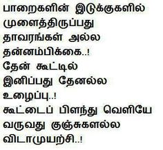 true Tamil Language, Proverbs, Like Me, Qoutes, Poems, Lyrics, Thoughts, Feelings, Sayings