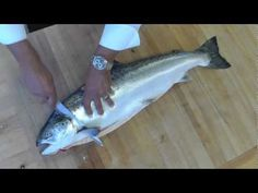 How to butcher whole salmon- How to Fillet a fish-How to debones salmon-...