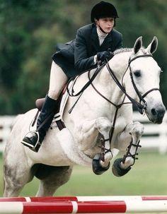horseback riding,hunter jumper