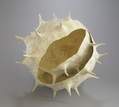 Holly Senn, Artist, Spore, 2010
