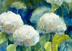 Hydrangeas Flower Print White Flower Watercolor Wall Art by Janet Zeh