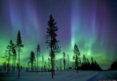 Would really love to see this! Aurora Borealis at the Arctic Circle