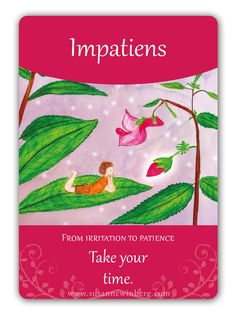Impatiens - Bach Flower Oracle Card by Susanne Winberg. Message: Take your time.
