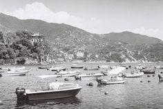 Zenit - Portofino