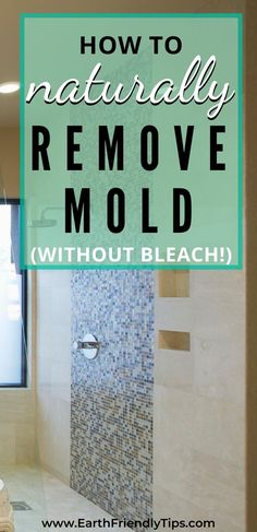 If you find mold in your home, don't reach for that bottle of bleach. Instead, discover a natural mold cleaner recipe that actually works. When you use a natural mold remover, you'll enjoy the benefits of an effective product that gets the job done without using any dangerous or toxic chemicals. #natural #cleaning #ecofriendly