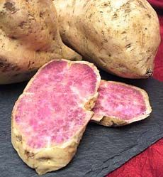 Okinawa Sweet Potato  A Hawaiian sweet potato with white skin and lavender flesh. They are best served baked.