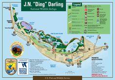 Ding+Darling+Map.jpg (1600×1116)