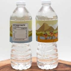 Camping Birthday Party Water Bottle Labels - Canoe ride