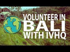 Volunteer in Bali | International Volunteer HQ