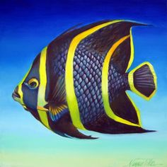 """""""French Striped Angelfish"""" by Nancy Tilles: Buy prints, posters, canvas and framed wall art directly from thousands of independent working artists at Marine Aquarium, Saltwater Aquarium, Aquarium Fish, Pretty Fish, Beautiful Fish, Underwater Creatures, Ocean Creatures, Colorful Fish, Tropical Fish"""