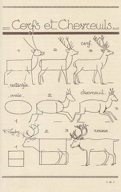 The basic shape of a deer. Notice the shape technique - especially valuable for natural looking forms in animals and people