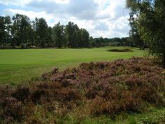 A golf course in Lincolnshire has recently been named as one of the top 10 courses in England, on a list which ranks the top 100 across the country. Chalets For Sale, Golf Tips, About Uk, Places To Travel, Golf Courses, England, Lifestyle, Top, Parks