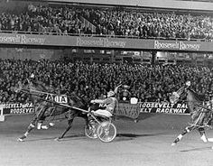 Historic Roosevelt Raceway, Stanley Dancer  Most Happy Fella