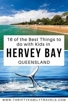 Best Things to do in Hervey Bay with Kids - Thrifty Family Travels Travel With Kids, Family Travel, Amazing Destinations, Travel Destinations, Great Places, Places To See, Whale Watching Tours, Australia Travel, Coast Australia
