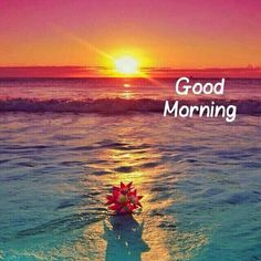 good morning have a nice day best images and wishes