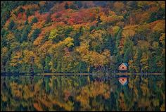 solitude by alan borror - acadia national park This is where I can see myself living...
