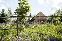 Natural, Straw Bale house in Międzylesie area in Poland. Designed with all sustainable strategies. Built with prefabricated straw bale panels.  #strawbale #prefabrication #sustainable #house #naturalny #dom #zdrowy #prefabrykaty #sloma #glina #ekodama