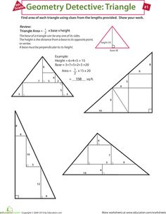 Worksheets: Find the Area of a Triangle
