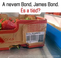 """straw"" is equivalent to ""James"", & berry is equivalent to ""Bond"", so ""berry, strawberry"" is being compared to ""Bond, James Bond"" - Daily LOL Pics Funny Picture Jokes, Funny Photos, Funny Images, Funny Jokes, Funny Stuff, Funniest Pictures, Random Stuff, James Bond, Rage Comic"