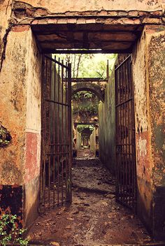 abandoned prison complex on Isle St. Joseph, French Guiana,
