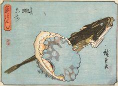 Abalone and Flathead, Utagawa Hiroshige; Publisher: Tsujiya Yasubei ^ Minneapolis Institute of Art Japanese Woodcut, Mont Fuji, Fish Print, Japanese Painting, Dope Art, Japanese Prints, Japan Art, Traditional Art, Art Reference