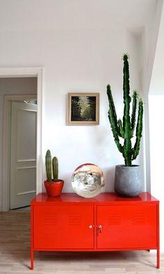Cactus everywhere, de todos os tipos e tamanhos. Suculentas também estão valendo para a decoração de casa