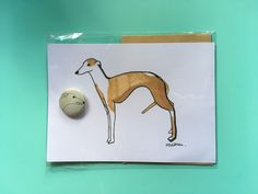 A personal favourite from my Etsy shop https://www.etsy.com/uk/listing/592872157/whippet-illustrated-postcard-with-badge