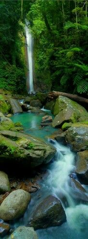 Casaroro falls Negros Oriental Philippines
