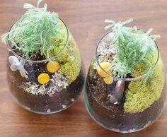 DIY terrariums via Yellow Brick Home  *Wouldn't David just flip over this!*