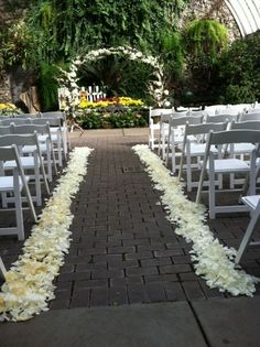Lauren & Scott's ceremony took place on Belle Isle in Detroit at the Belle Isle Conservatory & Aquarium.  They had a birch & curly willow branch arch with a white rose petal aisle border.  Arch Decor & Flowers by Petit Fleur Events, Ferndale MI