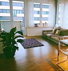 #Moderne 3.5 Zimmer #Wohnung in #Wallisellen, https://flatfox.ch/de/5248/?utm_source=pinterest&utm_medium=social&utm_content=Wohnungen-5248&utm_campaign=Wohnungen-flat