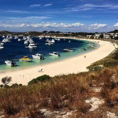 One of the many beautiful beaches on Rottness island #rottnestisland #rotto by w4deahmet http://ift.tt/1L5GqLp
