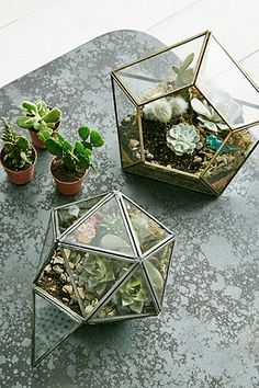Urban Grow Diamantenförmiger Terrarium-Blumentopf in Gold - Urban Outfitters
