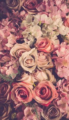 flowers floral blooms bunch of flowers flower bouquet cut flowers dried flowers summer flowers spring flowers colorful flowers beautiful flowers annual flowers. Bunch Of Flowers, Love Flowers, Colorful Flowers, Flowers Garden, Summer Flowers, Dried Flowers, Flowers Nature, Floral Flowers, White Flowers