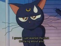 Sailor moon problems