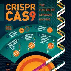 strongstuff — CRISPR/CAS9