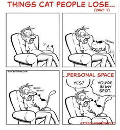Funny Cartoons, Funny Cats, Funny Animals, Cute Animals, Cat People, Happy People, Black Cat Comics, How To Cat, Cats And Kittens