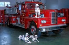 Warrenton VA FD...love the Dalmatians