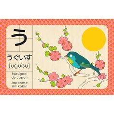 Abécédaire de Madame Mo : U comme UGUISU comme Rossignol en Japonais !
