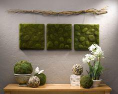 Wall Art Tutorial:  Moss Wall Art also link to moss globes