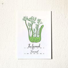 kitchen art print 'fennel'