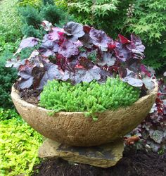 Hypertufa Garden Art | Garden Design Ideas: Hypertufa Class