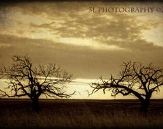 fine art photography on Etsy, a global handmade and vintage marketplace.